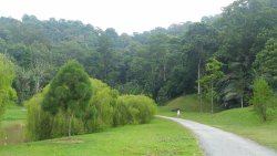 Kepong Botanical Garden