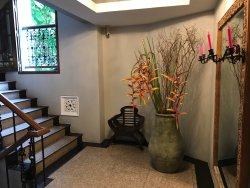 Quaint cosy hotel on Nimman road