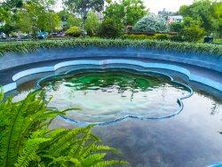 Urban Wetland Park