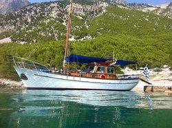 Fedra Cruises