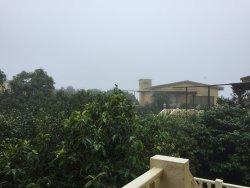 Rains in Mahabaleshwar