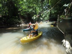 Maya Guide Adventures