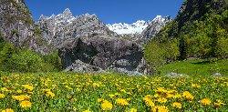 Albergo Bernina