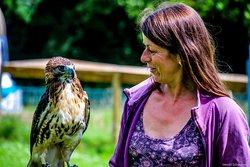 Bird Lady of Fowey