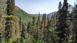 Lambs Canyon