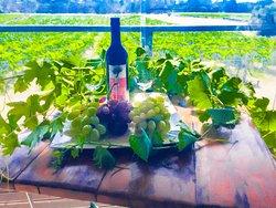 Entopia Wines