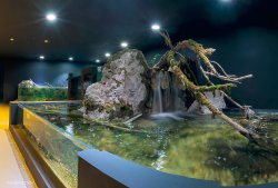 Aquatika Freshwater Aquarium Karlovac