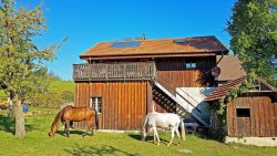 Guesthouse la Moliere