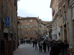 IAT Urbino Center