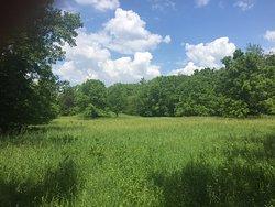 Sand Creek Conservation Area