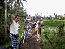 Sewa Sepeda Ubud