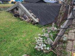 Yeyin Buluo Dixia Houses