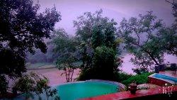 Natures paradise at Kumbhalgarh