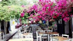 Taverna to Petrino