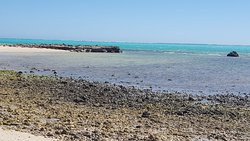 Ningaloo Coast World Heritage Area