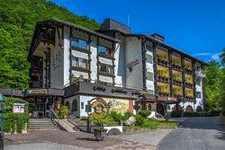 Moselromantik-Hotel Weissmuhle