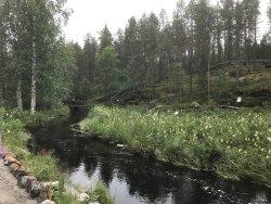 Jokkmokks Fjällträdgård