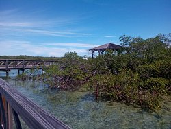 Bonefish Pond National Park