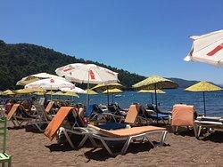 Erine Beach Club