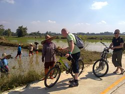 Recreational Chiang Mai Biking