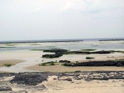 Ohara Shinri Beach
