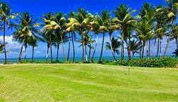 Palmas Del Mar Golf Club