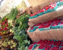 Salt Spring Tuesday Farmer's Market