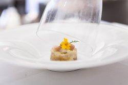 Ceviche de doré des Grands Lacs, rhubarbe et endives