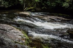 Chattooga River Loop Trail