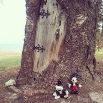 The Gollum Tree