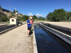 Mt. Shavano Fish Hatchery