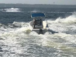 Have Fun & Reel Crazy Fishing Charters