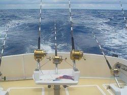 Horizon Fishing