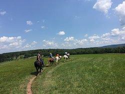 Tioga Trail Rides