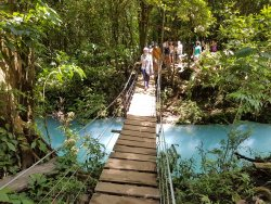Costa Rica Green Life Tours