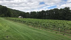 Mount Nittany Vineyard & Winery