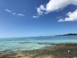 Ojima Coast