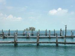 The marina view