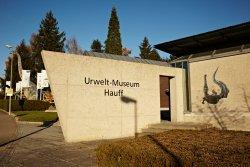 Urwelt Museum Hauff