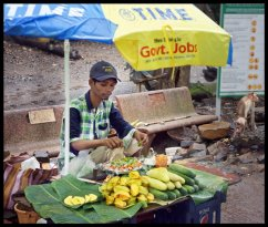 Adivasi fruit seller and Monkeys at entrance