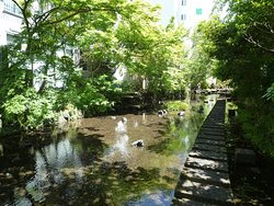 Puing bekas Sungai Shimadajuku Oi Kawagoshi
