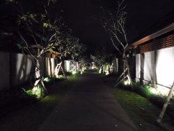 A nice cosy villa in Canggu