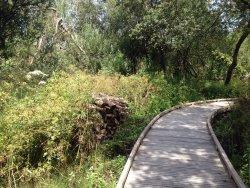 Le Marais de Trestel
