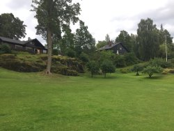 Brønnøya una isla con encanto