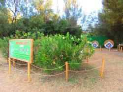 TAS - Tourism's Archery Service