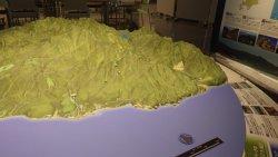 パノラマ模型