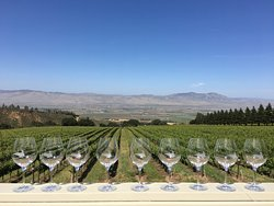 Mountains to the Bay Wine Tours