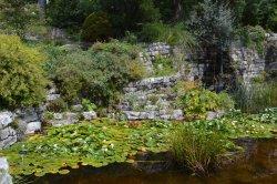 Jardin Botanique Lausanne