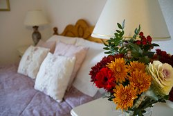 Shorefield Guest House & Self Catering