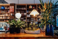 Botaniko Bistro Cafe Bar